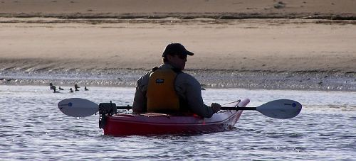 Kayaker and Morro Bay dunes